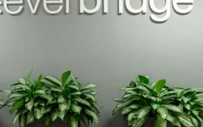 Helping a software company grow its office