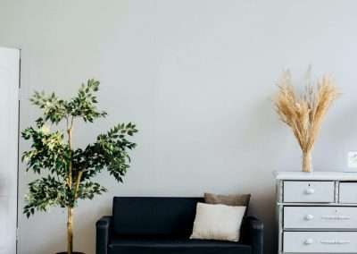 Biophilic Design Principles at Home